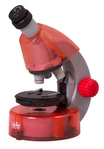 Микроскоп Levenhuk LabZZ M101 Апельсин_2