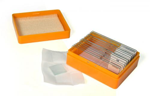 Набор готовых микропрепаратов Levenhuk N10 NG_4